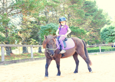 Horse Share Southern Highlands