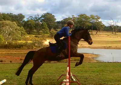 Showjumping training southern highlands